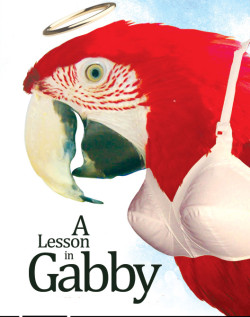 a_lesson_in_gabby-web-250x317