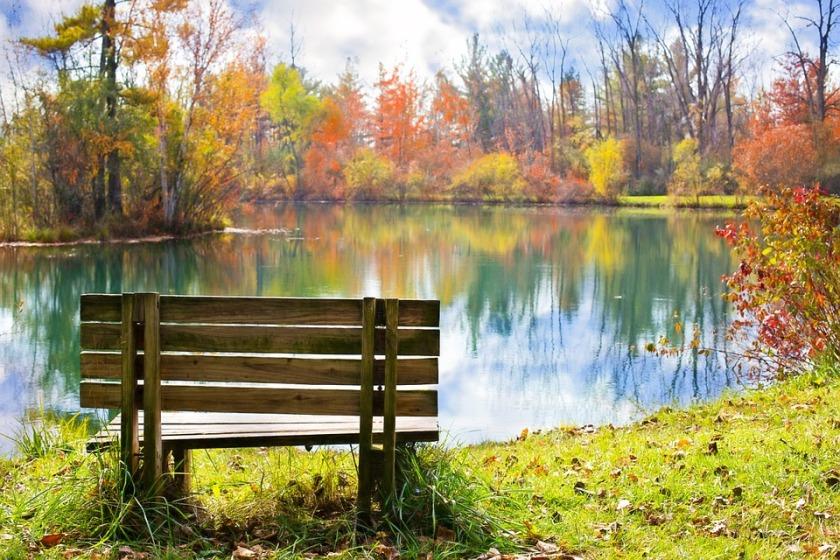 wood-bench-986347_960_720