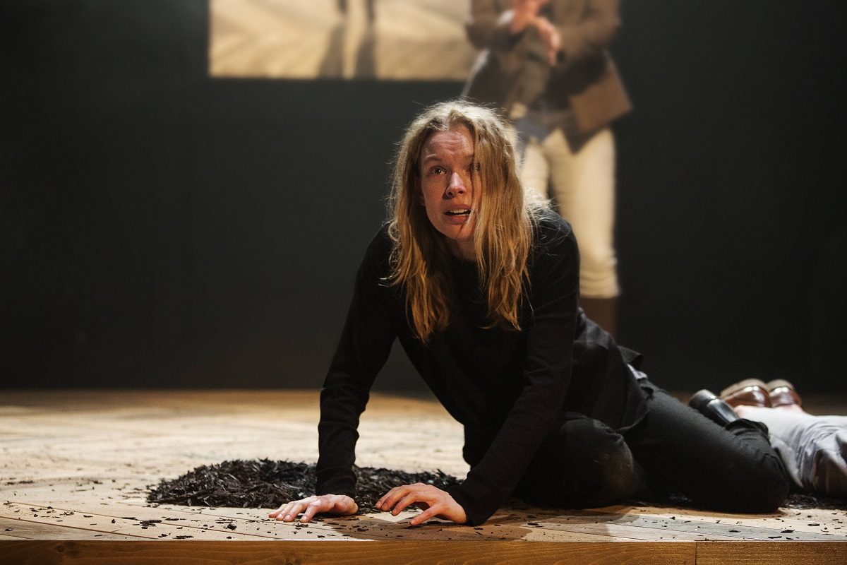 Hamlet as you've never seen it in the haunting, beautiful ASL/English adaptation Prince Hamlet